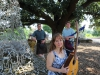 Piper Jones Band